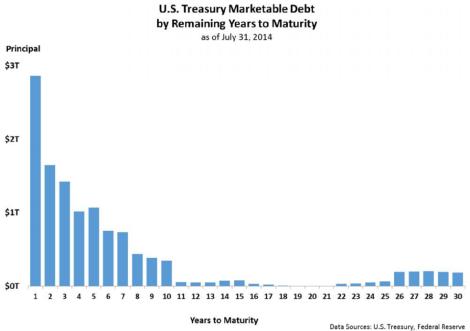 debt maturity distribution