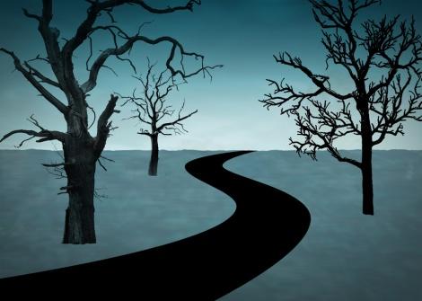 cursed trail